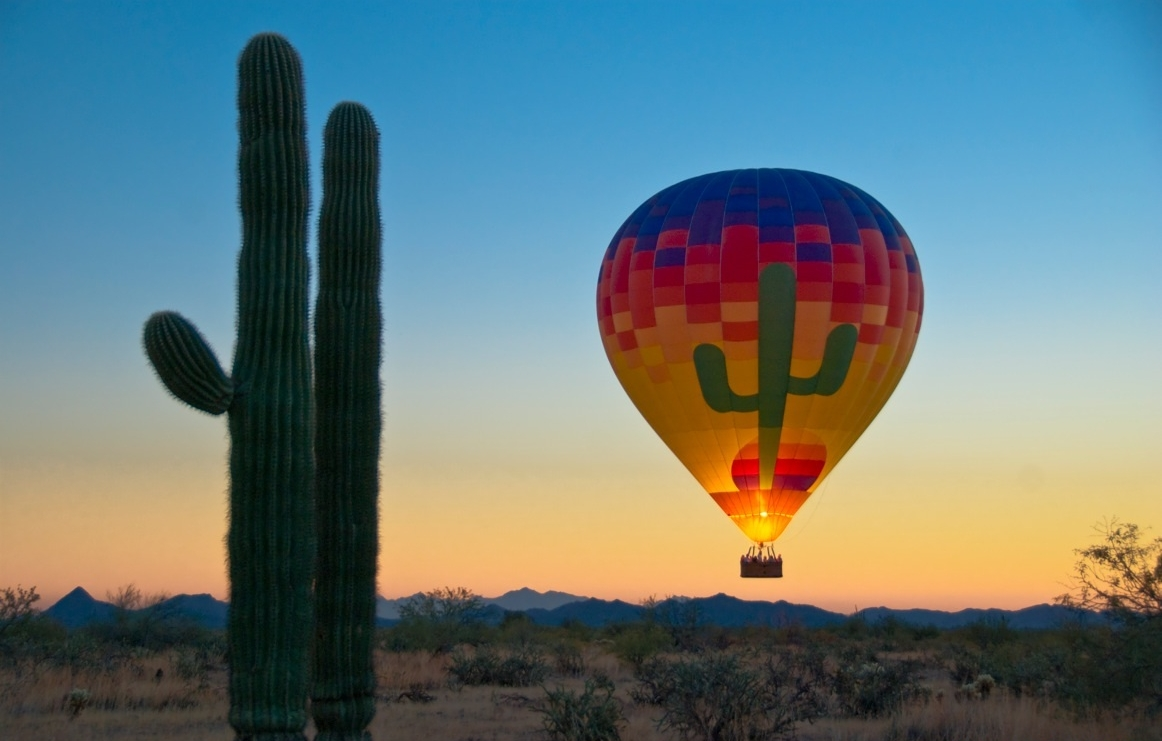 Soaring Over the Sonoran!