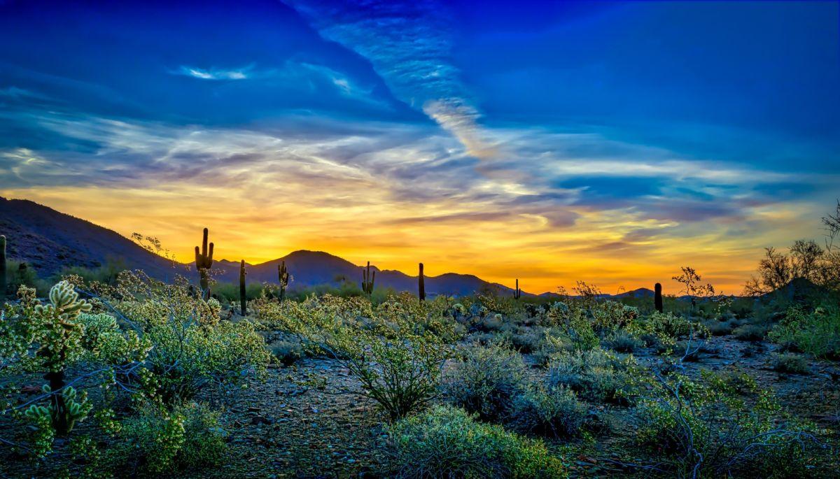 4 Tips for Photographing Desert Landscapes