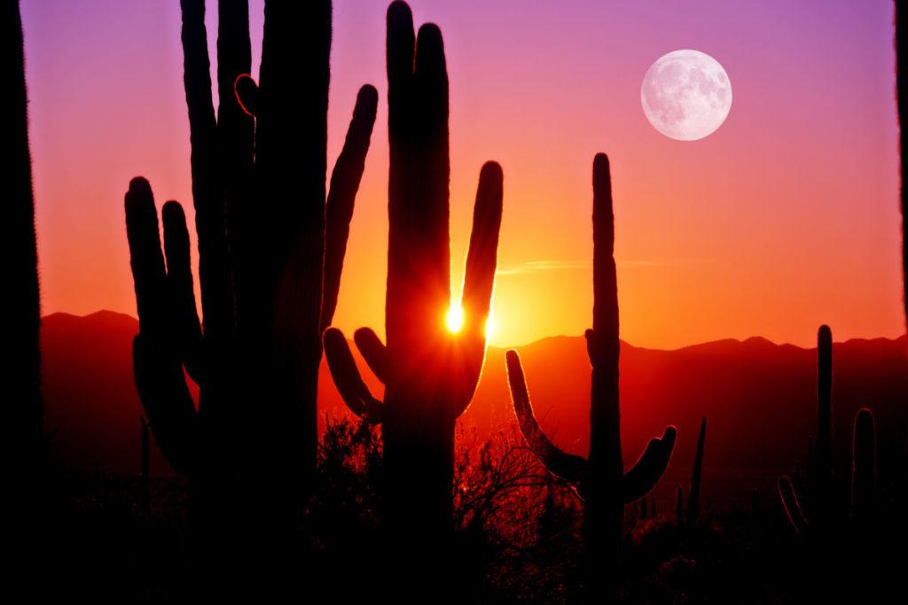Spectacular Scottsdale Sunsets