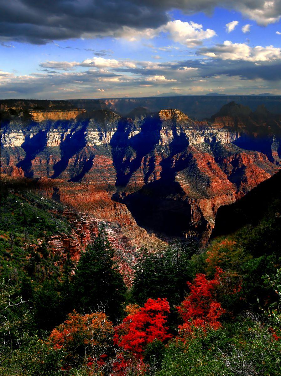 Rediscover Arizona