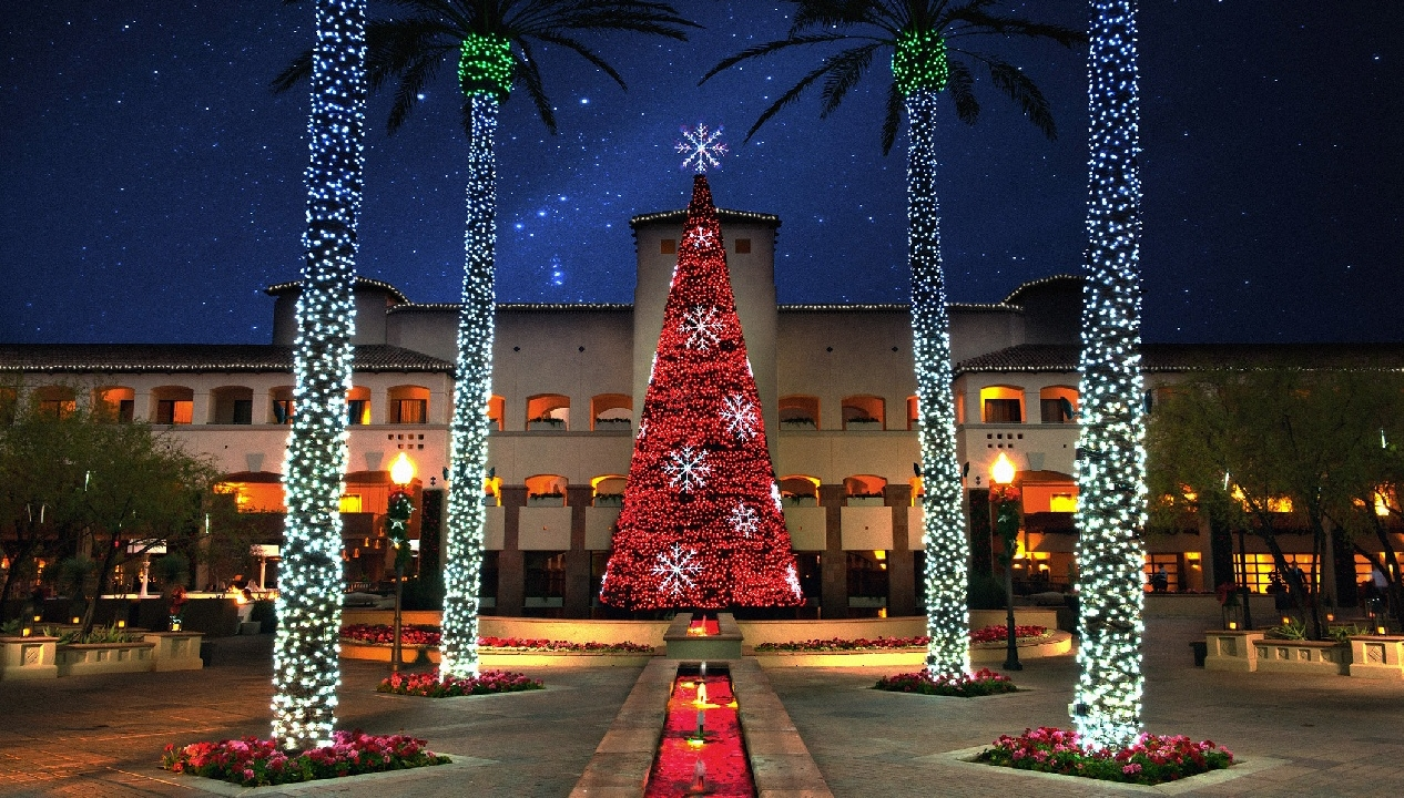 11th Annual Holiday Tree Lighting Ceremony | November 17th, 2020